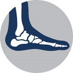 Practice Exam Question Bank: Ankle